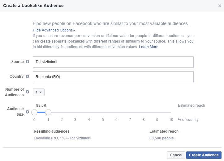 Audientele in Facebook Ads